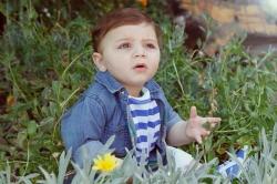 תמיר פאדי עראידה