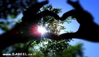 مجموعة صُور مميَّزة التقطتها صديقة الموقع وردة غانم