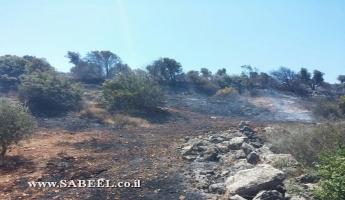 حريق في منطقة دير حنا وطائرات تعمل على اخماده