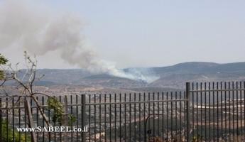 حريقان في منطقة سخنين وشعب وسلطة الاطفاء تستخدم الطائرات لإخماد الحريقين