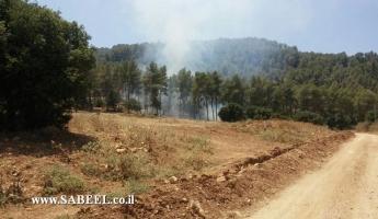 حريق في منطقة حرشية بالقرب من المدخل الشمالي لبلدة المغار