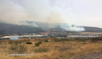 الحريق في احراش نين سببه تقليم الاشجار وحرقها