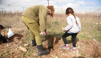 اللواء 300 في الجيش الاسرائيلي يقوم بالتعاون مع طلاب من الشمال بغرس الآلاف من اشجار السرو في الجليل